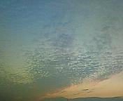 200901091711000.jpg