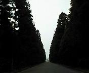 200901181303000.jpg
