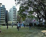 200904051551000.jpg